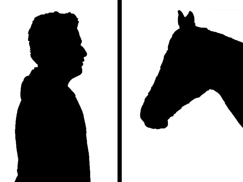Paarden hebben een spiegelgedrag. Als je gestrest bent, dan zullen zij dat ok zijn. ©Youcef Kerboua